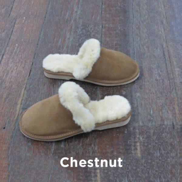 Chestnut Slipper Scuffs Perth