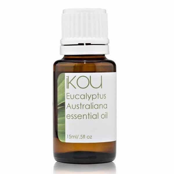 Essential Oil - Eucalyptus oil