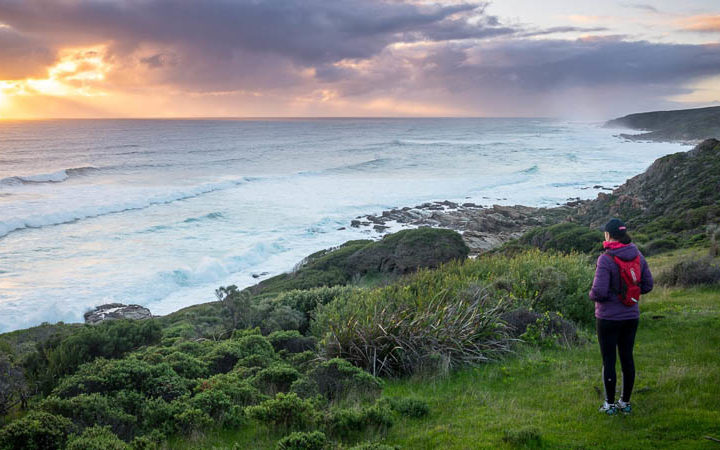 Best Perth Tourist Attractions – Written by a Local
