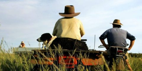 Supporting Our Farmers Beyond The Drought