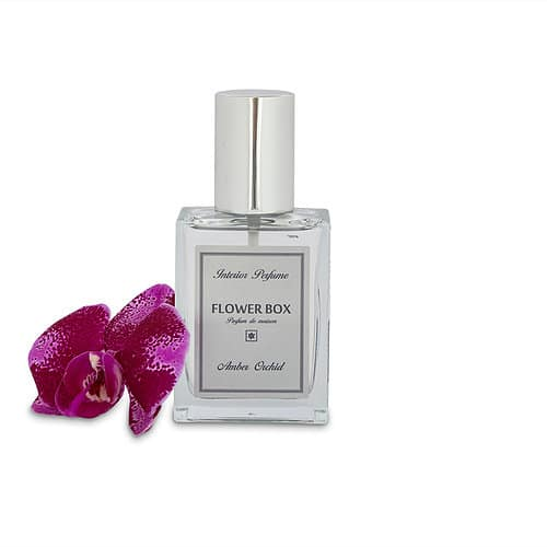 Flower Box Interior Perfume Amber Orchid